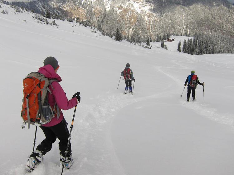 Abstieg Vom Gipfel Zur Stuibenalpe 1