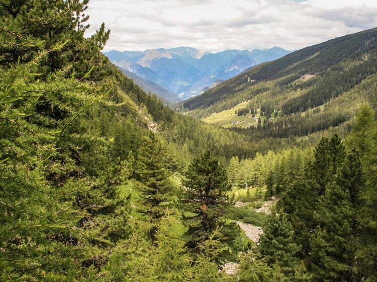 Die Ammergauer Alpen Wandern Am Hohenzollernhaus
