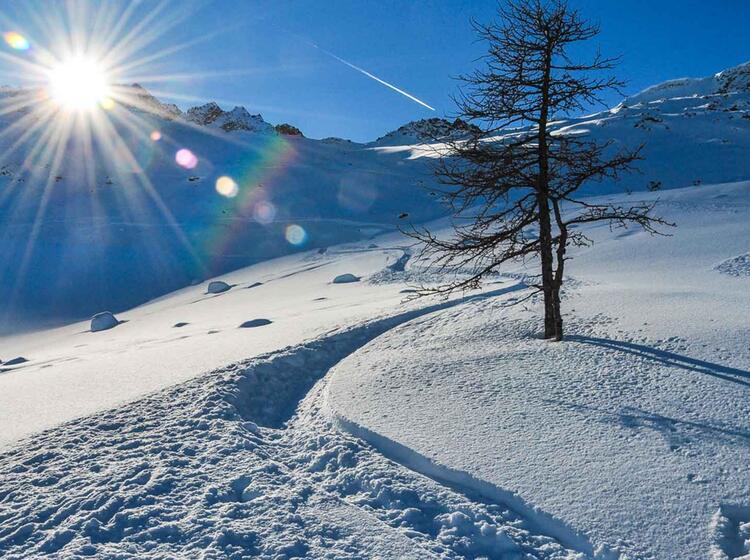 Gefu Hrte Skitouren In Garmisch An Der Alpspitze