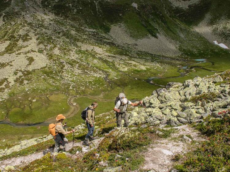 Gefuehrtes Bergwandern Im Oetzal