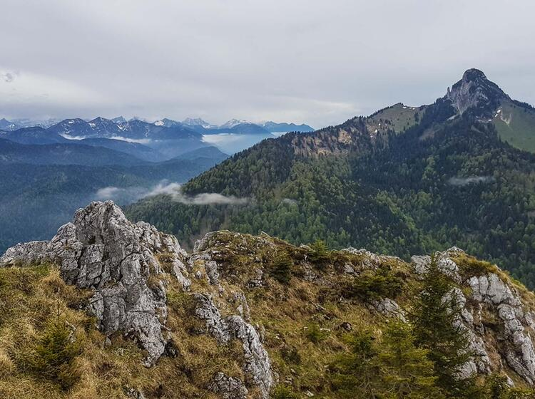 Traumausblicke Wandern Tegernsee Erleben Mit Wanderfuehrer Alpine Welten