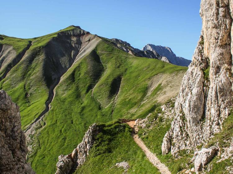 Wandern Gefuehrt An Der Zugspitze