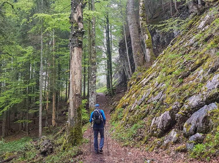 Wandern Rund Um Den Tegernsee Mit Wanderfuehrer