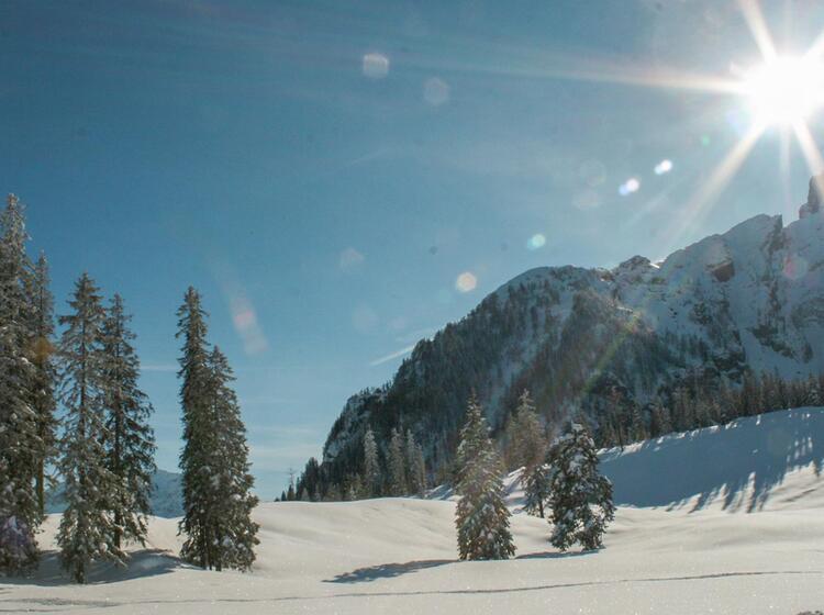 Winterlandschaft Am Watzmann In Berchtesgaden